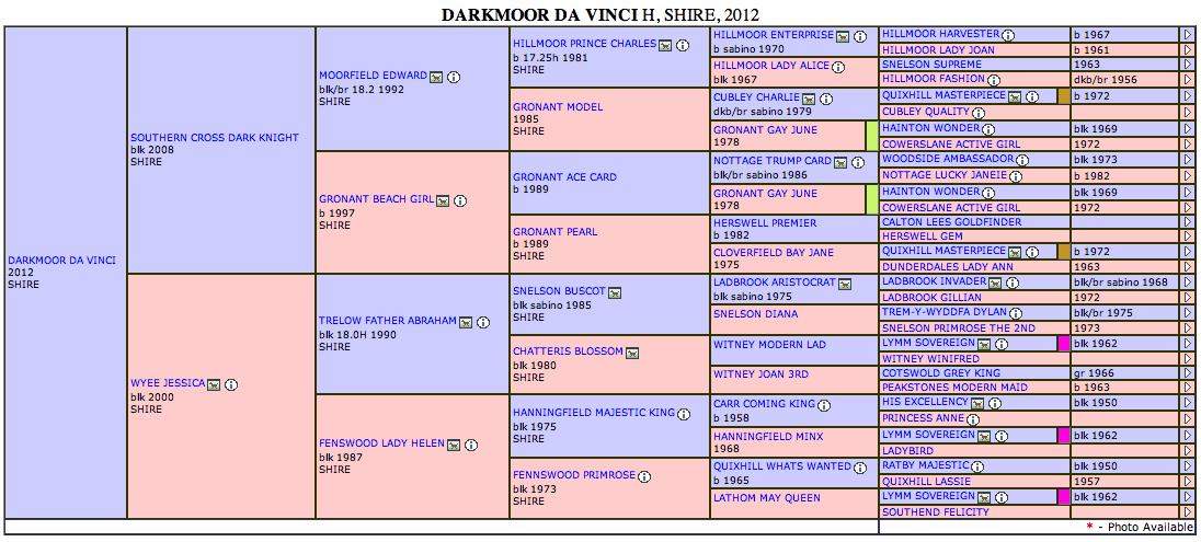 Screen Shot 2013-08-03 at 4.19.36 PM
